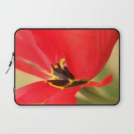 Papageientulpe Laptop Sleeve