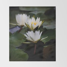 White Lily Flowers In A Pond With Green Lily Pads Throw Blanket