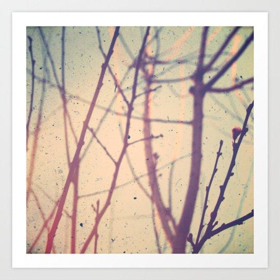 spring bud Art Print