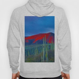 Green Cactus Field In The Desert With Red Mountains Blue Grey Sky Landscape Photography Hoody
