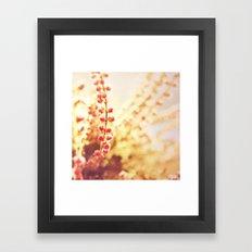 Sweet Heather Nature Photography Framed Art Print