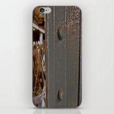 subways iPhone & iPod Skin