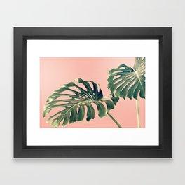 Monstera Blush Framed Art Print