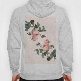 Butterflies in the Rose Garden Hoody