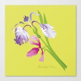 Beautiful Spring Irises Canvas Print
