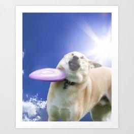 Frisbee Dog Art Print