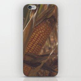 Fall Corn iPhone Skin