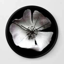 A delicate and sheer rosehip. Wall Clock