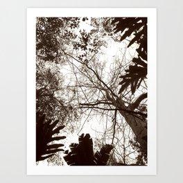 Memories of Endor 1 (B&W) Art Print