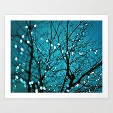 tree photograph. Wonder Art Print