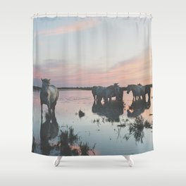 Camargue Horses IV Shower Curtain