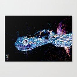Negative bush viper Canvas Print