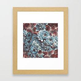 Sempervivum Succulents Framed Art Print