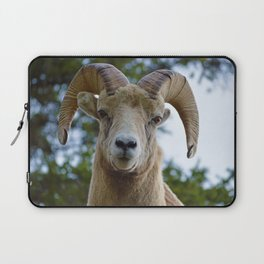Natures best starring contest Laptop Sleeve