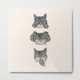No Evil Cat Metal Print