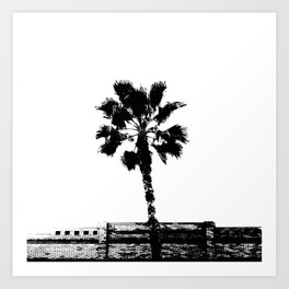 Black & White Palm Art Print