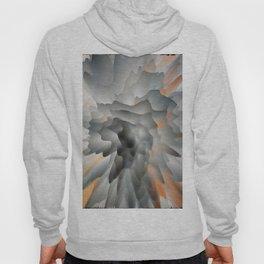 Abstract 997 Hoody