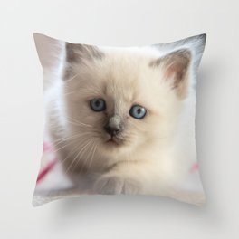 #Kitten #starts #sneaking up #early Throw Pillow