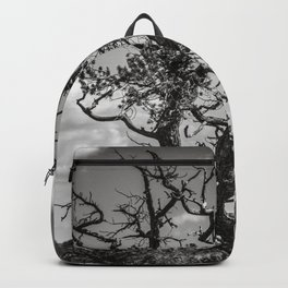 Ancient Tree, Survivor, Alive Backpack