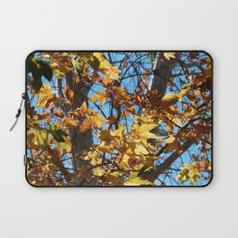 Fall Time Tree Laptop Sleeve