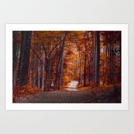 Beautiful Escape Art Print