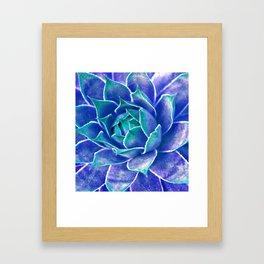 Suculenta Azul Framed Art Print