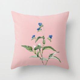 Vintage Blue Spiderwort Botanical Illustration on Pink Throw Pillow