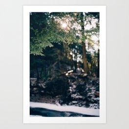 through Art Print