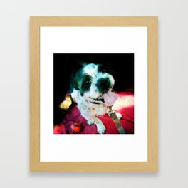 Happy Hound Framed Art Print