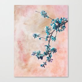 FIRST SPRING Canvas Print