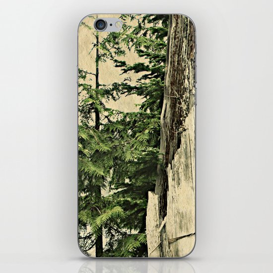 North by Northwest iPhone & iPod Skin
