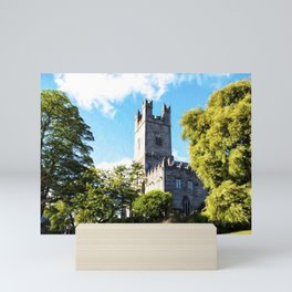 St Mary's Cathedral, Limerick Mini Art Print