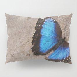 Blue Morpho Butterfly Pillow Sham