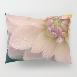 Dahlias & Raindrops, 2 Pillow Sham