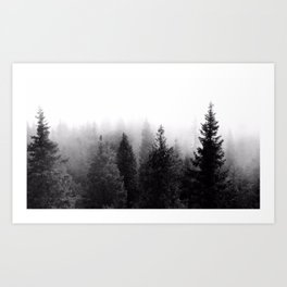 Silent Forest Dark Art Print