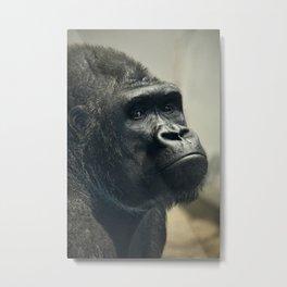 Pensive Gorilla Metal Print
