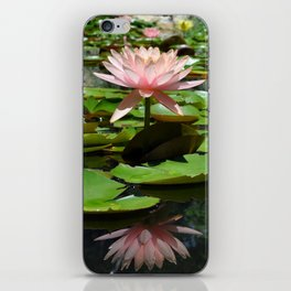 Pink Water Lilies iPhone Skin