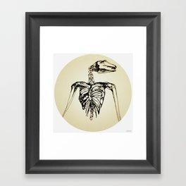 Skeleton Drawing: Flying Fox Framed Art Print