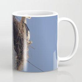 Storks on Electric Pylon  Coffee Mug