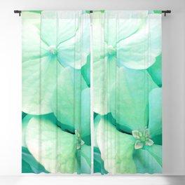 Mint Hydrangea floral art Blackout Curtain