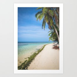 The San Blas Islands in Panama. Isla Iguana Art Print