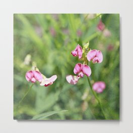 Vintage Inspired Pink and Green Wildflowers Metal Print