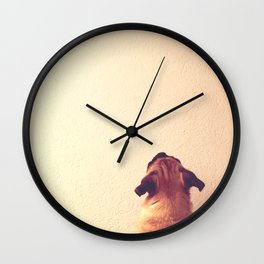 Pug staring up the wall Wall Clock