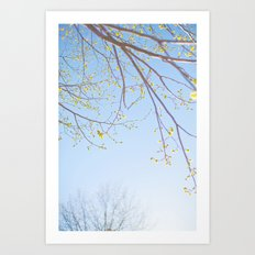 Spring Light. Art Print