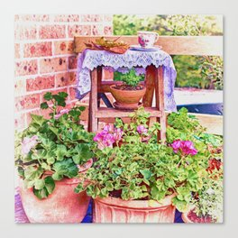 Terracotta and Geraniums Canvas Print