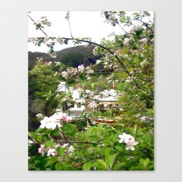 Behind the Flowers! Canvas Print