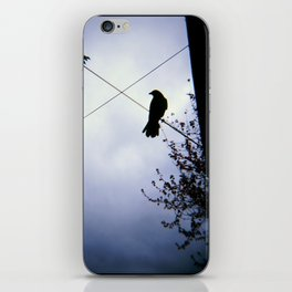 Crows and Crossed Wires iPhone Skin