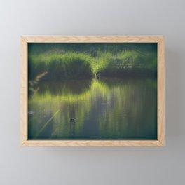 turtle swimming away at Trojan pond, near Goble, Oregon Framed Mini Art Print