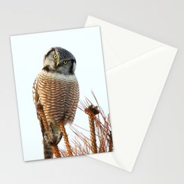 Finding the balance Stationery Cards