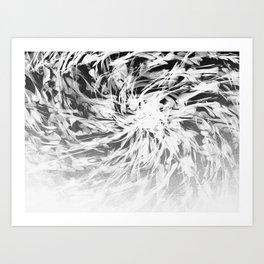 B&W Abstract Spiral Art Print